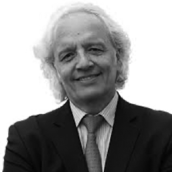 Diego P. Fernández Arroyo